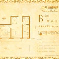 1室1厅1卫  46.87平米