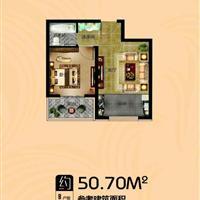 1室1厅1卫  50.7平米