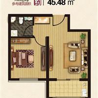 1室1厅1卫  45.48平米